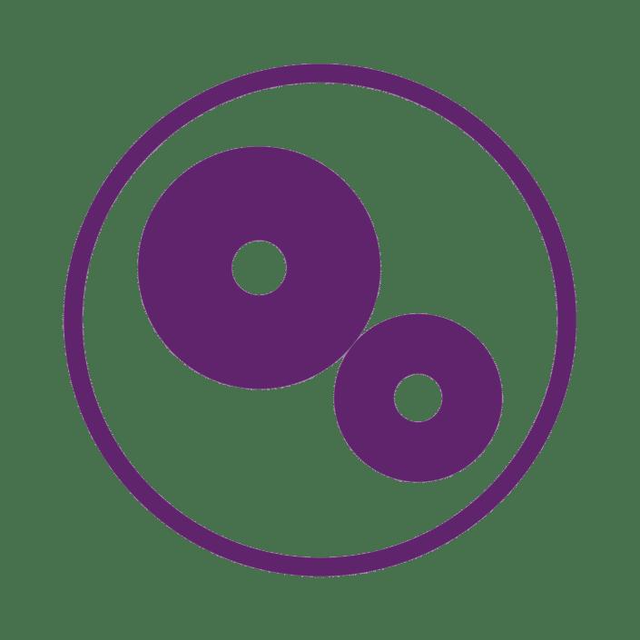 Ebbecke Verfahrenstechnik kompacktierung icon